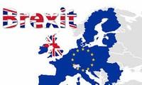 英国脱欧不影响越南和英国关系