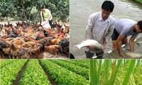 将农业结构重组与应对气候变化相结合