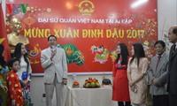 旅居埃及越南人春节见面会