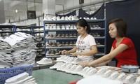 越南-加拿大贸易盈余日益扩大