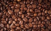 首次世界咖啡生产者论坛将在哥伦比亚举行