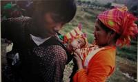 """""""越南家庭平等""""图片展在河内举行"""