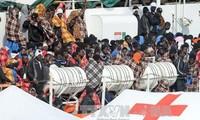 联合国难民署:叙利亚难民人数突破500万