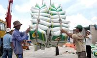 越南向中国出口糯米出现停滞迹象