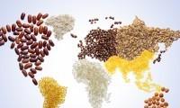 亚太经合组织粮食安全会议周结束