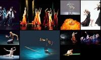 """6国艺术家参加在越南举办的""""亚欧相聚""""当代舞蹈节"""