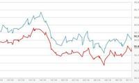 10月31日越南经济和股市情况