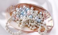 皇家珍珠饰品公司推出优惠活动