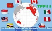 越南争占《全面且先进的跨太平洋伙伴关系协定》的先机