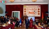 越南驻俄罗斯大使馆举行2018年戊戌春节见面会