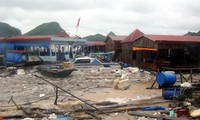 Localities recovering from Son Tinh storm