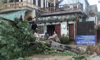 Central Vietnam seeks to recover from typhoon Nari