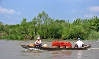 WB supports Vietnam in water management
