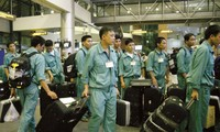 Strengtnening labor export companies