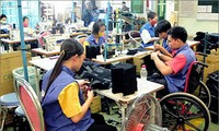 Activities to mark Vietnam Day of People with Disabilities