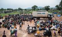 UNHCR: nearly 900,000 flee South Sudan