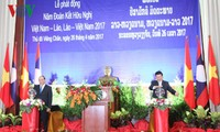 Vietnam-Laos Friendship Year 2017 launched