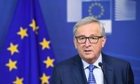 Brexit: EC President accepts EU's mistakes