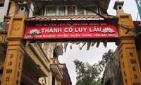 Situs peninggalan  sejarah Luy Lau adalah salah satu diantara pusat-pusat budaya dari orang Viet purba
