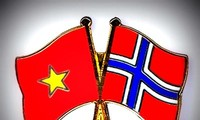第八次越南-挪威外交部副部长级政治磋商在河内举行