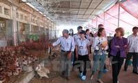 美国与越南合作防控疫情 保护人民健康