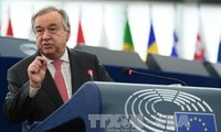 调整联合国维和行动以适应新环境