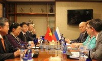 丛氏放与俄罗斯国家杜马副主席奥尔加·艾菲法诺娃举行双边会晤