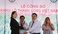 越南向澳大利亚出口第一批新鲜火龙果