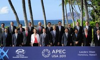 Vietnams Beiträge zum APEC-Gipfel