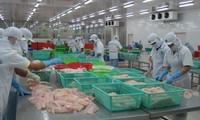 Vietnamesische Unternehmen protestieren gegen US-Strafzölle auf Pangasius