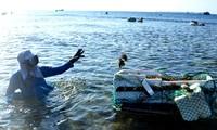Insel Ly Son - lebendige Atmosphäre am Strand in der Meerestrockenzeit