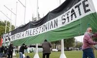 Arabische Liga beruft zu einer dringlichen Sitzung über Palästina ein