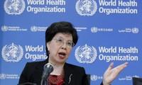 Ebola-Impfstoff: Hoffnung auf Ende der Epidemie in Westafrika