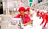 TPP: Vietnamesische Wirtschaft habe schätzungsweise große Chancen