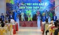 Auslandsvietnamesen tragen zum Aufbau des Landes bei