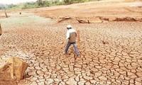 Sofortige Hilfe bei Dürren und Versalzung