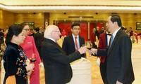 Beziehungen zwischen Vietnam und Irland entwickeln sich positiv