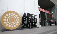 Vietnam beteiligt sich an APEC in Peru und bereitet sich für APEC 2017 vor