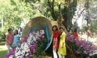 Blumenfestival zum Frühling in Ho Chi Minh Stadt