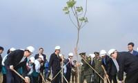 Staatspräsident Tran Dai Quang startet das Baumpflanzfest 2017 in Quang Ninh