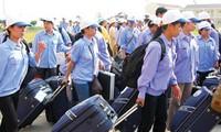Gewerkschaften schützen vietnamesische Arbeiter im Ausland