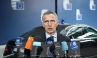 Nato wird mehr zum Kampf gegen Terrorismus beitragen