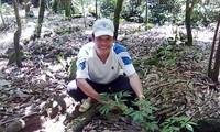 Förderung die Marke von Ginseng Ngoc Linh aus Vietnam