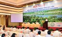 Forstwirtschaft soll drei Ziele für nachhaltige Entwicklung gewährleisten