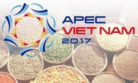 Vietnam fördert die Umsetzung bevorzugter Aufgaben des APEC-Jahres 2017