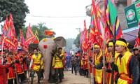 Elefantenumzug in Dao Xa