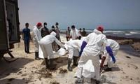 利比亚海岸发现的遇难移民增至133人