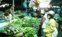 越南林同省大叻市青菜价格猛涨