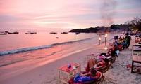 越南参加柬埔寨第五次海洋节活动