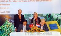 Le Vietnam et les Pays-Bas coopèrent dans l'agriculture et l'adaptation au changement climatique